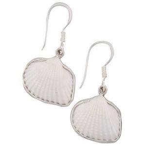 Charles Albert White Ark Shell Seashell Earrings